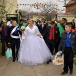 Trubači Tornado na svadbi